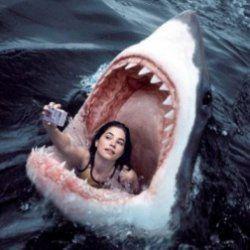 Selfie tragodie im hintergrund
