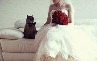 Hochzeitsrekorde des Guinness-Buches