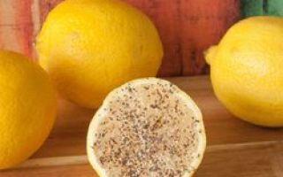 Cytryna, sól i czarny pieprz radzą sobie z tymi problemami lepiej niż leki