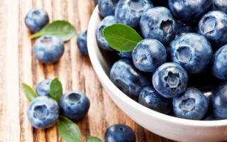 Blåbær er en naturlig stimulator av hjernen