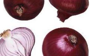 10 przydatnych właściwości cebuli