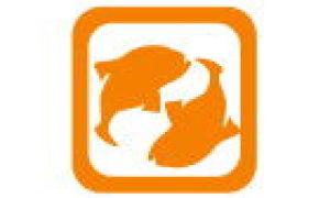 Horoskop av fisk