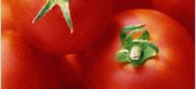 tomată