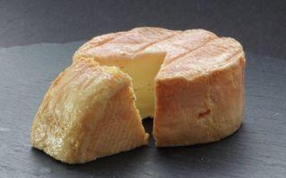 Vildsvin truer produksjonen av den franske osten Munster