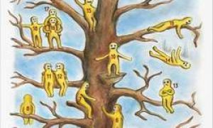 """Test """"Drzewo z małymi mężczyznami"""" powie ci o swoim stanie emocjonalnym"""
